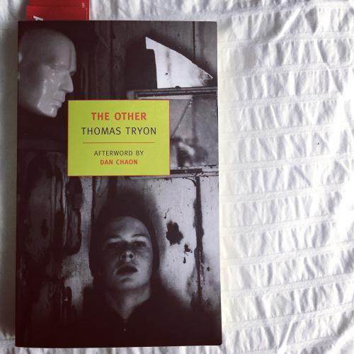 Berbagai Novel Horor Mengerikan Untuk Dibaca